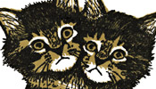 Two-headed kitten new year's card